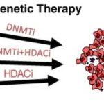 اپی ژنتیک درمانی: راهکاری برای مبارزه با بیماری سرطان