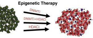 اپی ژنتیک درمانی