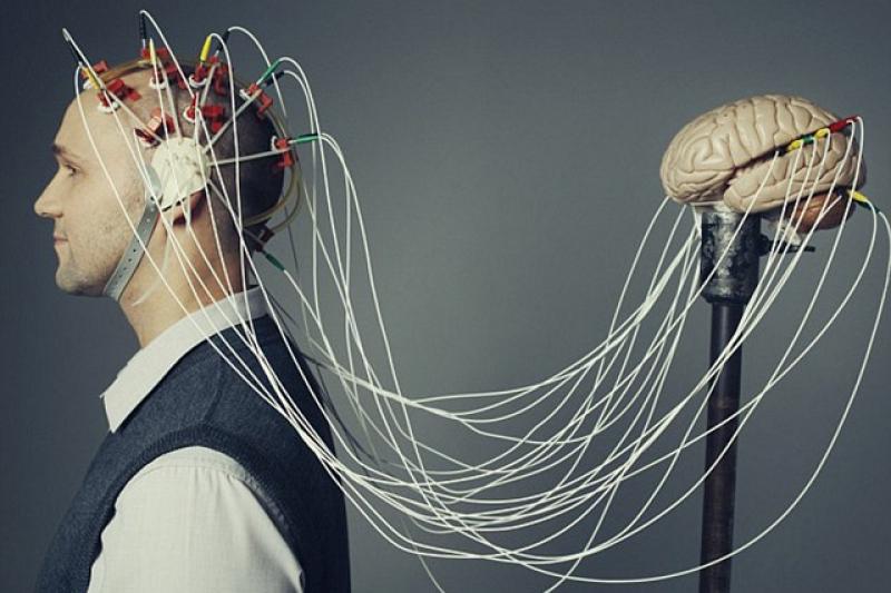 واسط عصبی یا واسط مغز رایانه و انواع آن