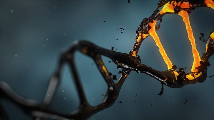 فناوری های آینده ساز: ژنتیک